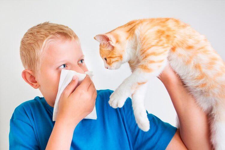 аллергия на хлеб симптомы