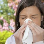allergiya-na-ambroziyu-foto